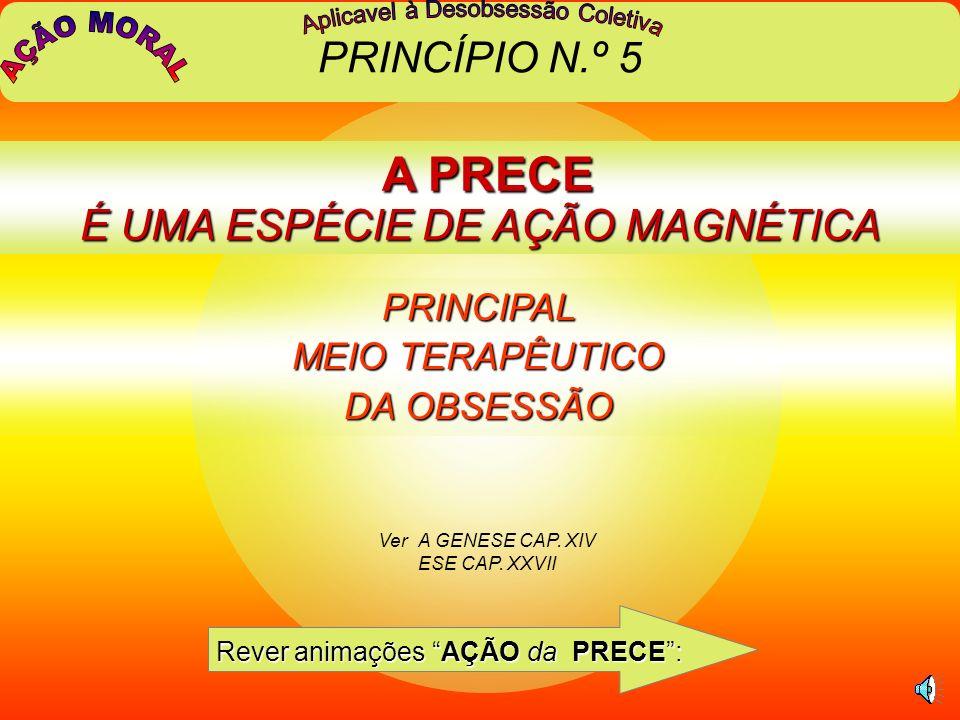 A PRECE É UMA ESPÉCIE DE AÇÃO MAGNÉTICA