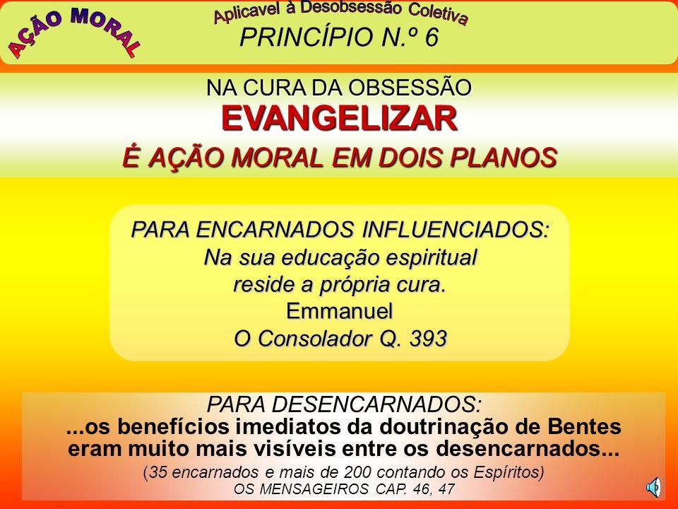 AÇÃO MORAL PRINCÍPIO N.º 6