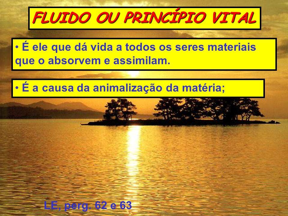 FLUIDO OU PRINCÍPIO VITAL
