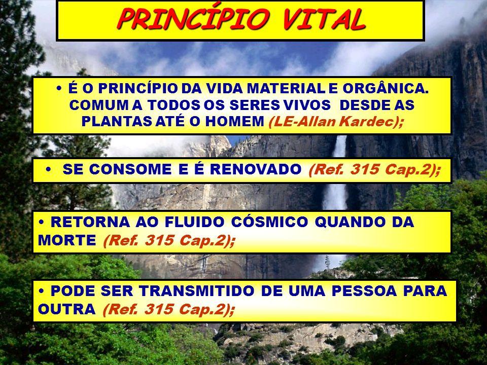 SE CONSOME E É RENOVADO (Ref. 315 Cap.2);