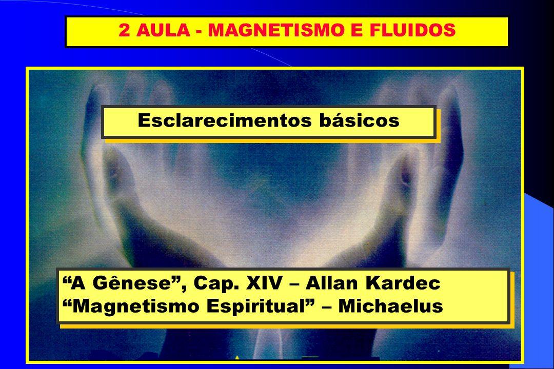 2 AULA - MAGNETISMO E FLUIDOS