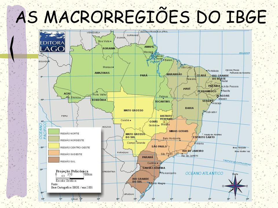 AS MACRORREGIÕES DO IBGE