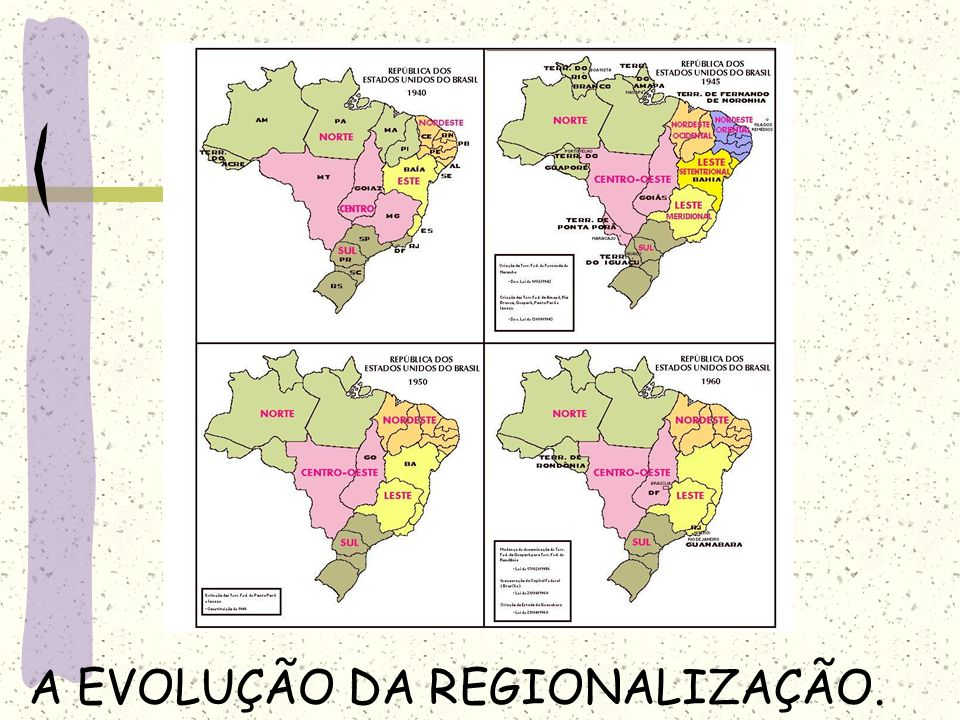A EVOLUÇÃO DA REGIONALIZAÇÃO.