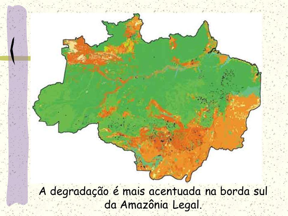 A degradação é mais acentuada na borda sul da Amazônia Legal.