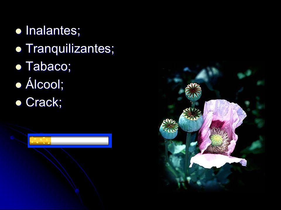 Inalantes; Tranquilizantes; Tabaco; Álcool; Crack;
