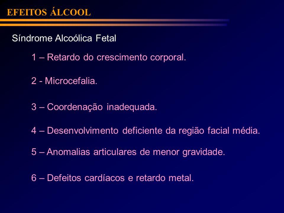 EFEITOS ÁLCOOL Síndrome Alcoólica Fetal. 1 – Retardo do crescimento corporal. 2 - Microcefalia. 3 – Coordenação inadequada.