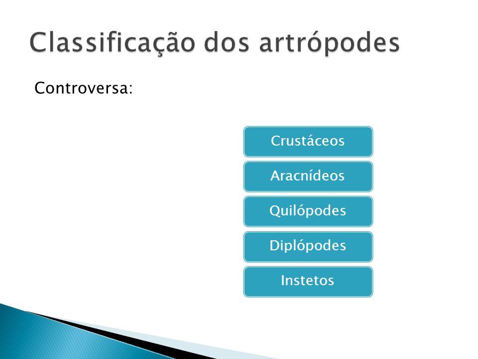 Classificação dos artrópodes