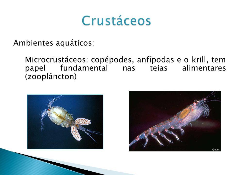 Crustáceos Ambientes aquáticos: