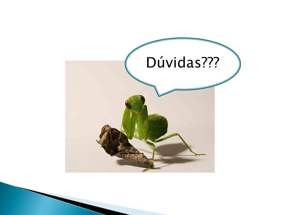 Ramom de novo ! : ) Com direito a perninha apoiada na folha seca e tudo !!!!!