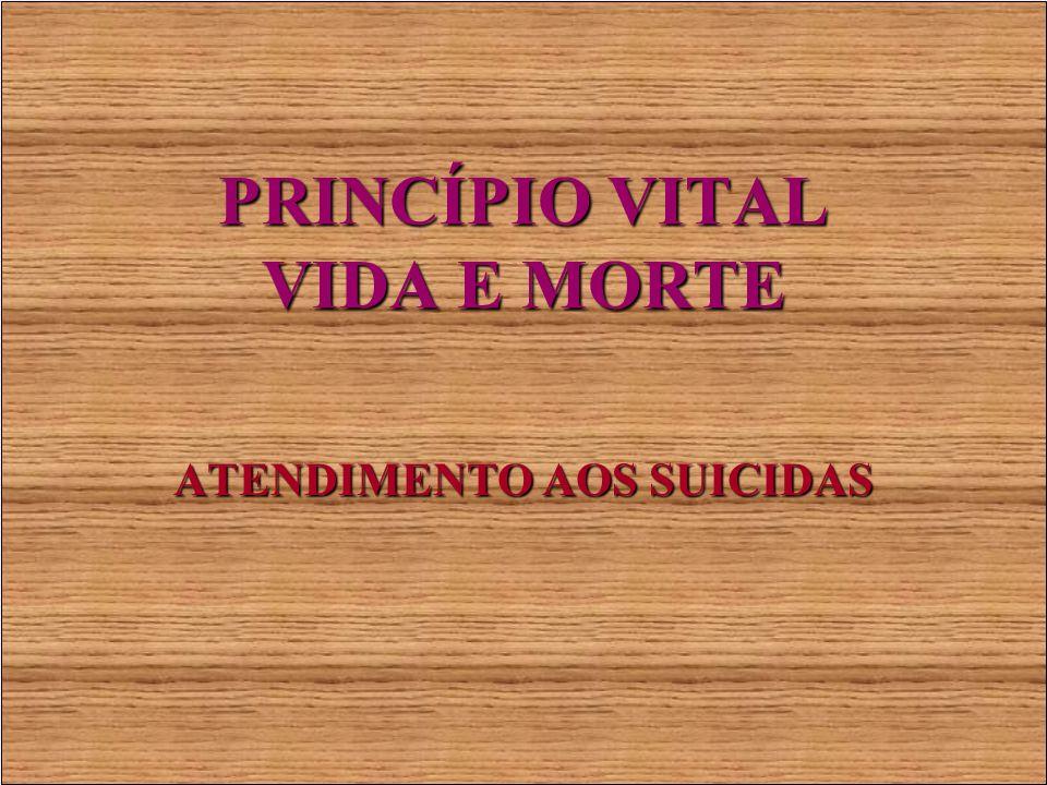 PRINCÍPIO VITAL VIDA E MORTE