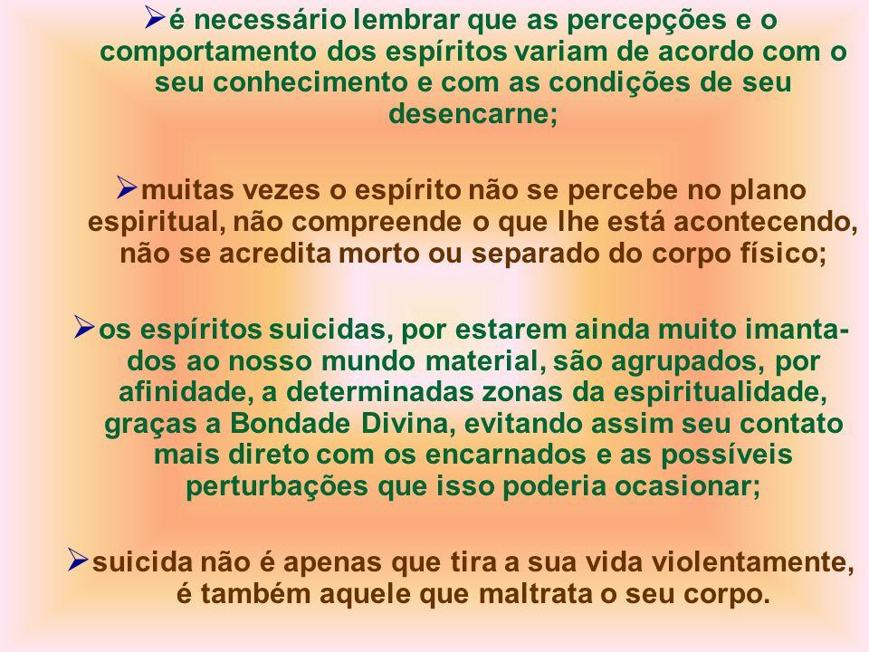 é necessário lembrar que as percepções e o comportamento dos espíritos variam de acordo com o seu conhecimento e com as condições de seu desencarne;