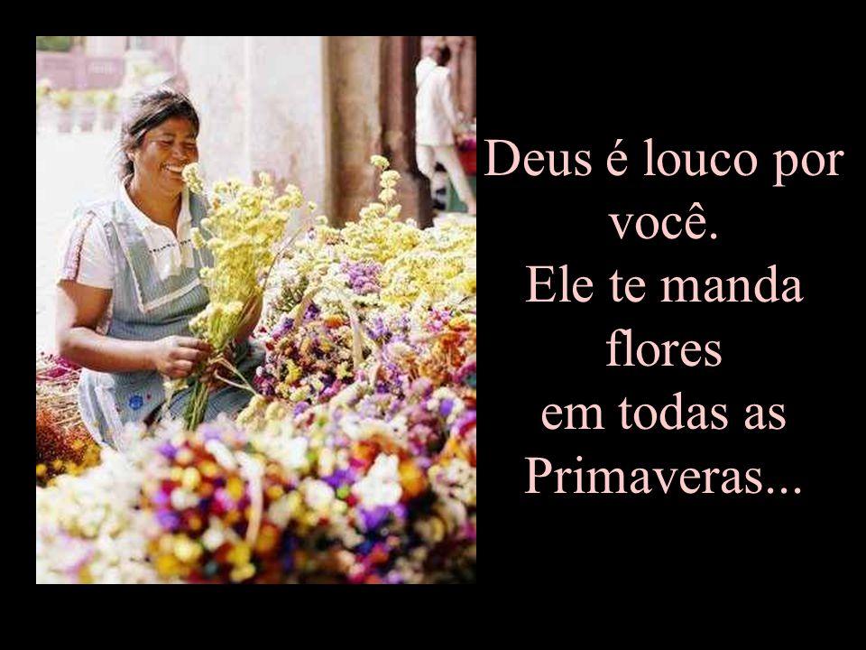 Deus é louco por você. Ele te manda flores em todas as Primaveras...
