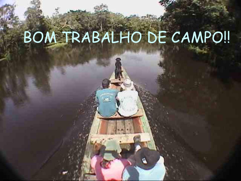 BOM TRABALHO DE CAMPO!!