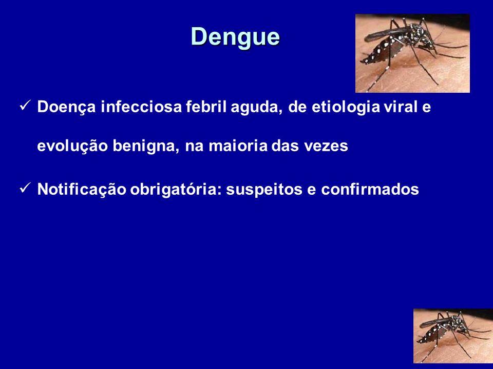 Dengue Doença infecciosa febril aguda, de etiologia viral e evolução benigna, na maioria das vezes.