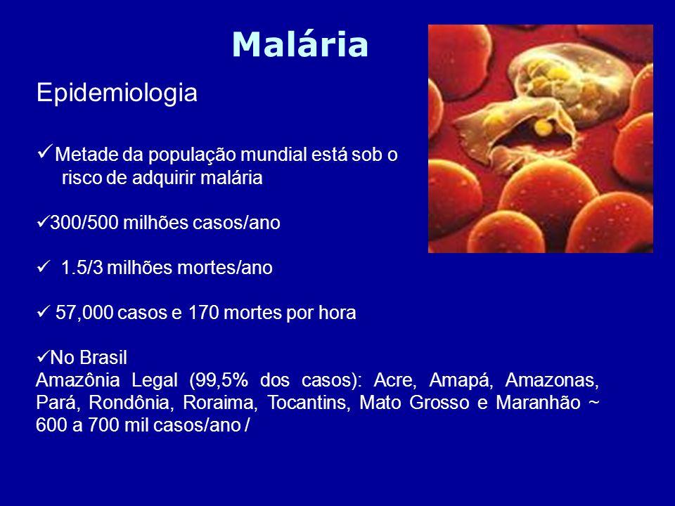Malária Epidemiologia Metade da população mundial está sob o