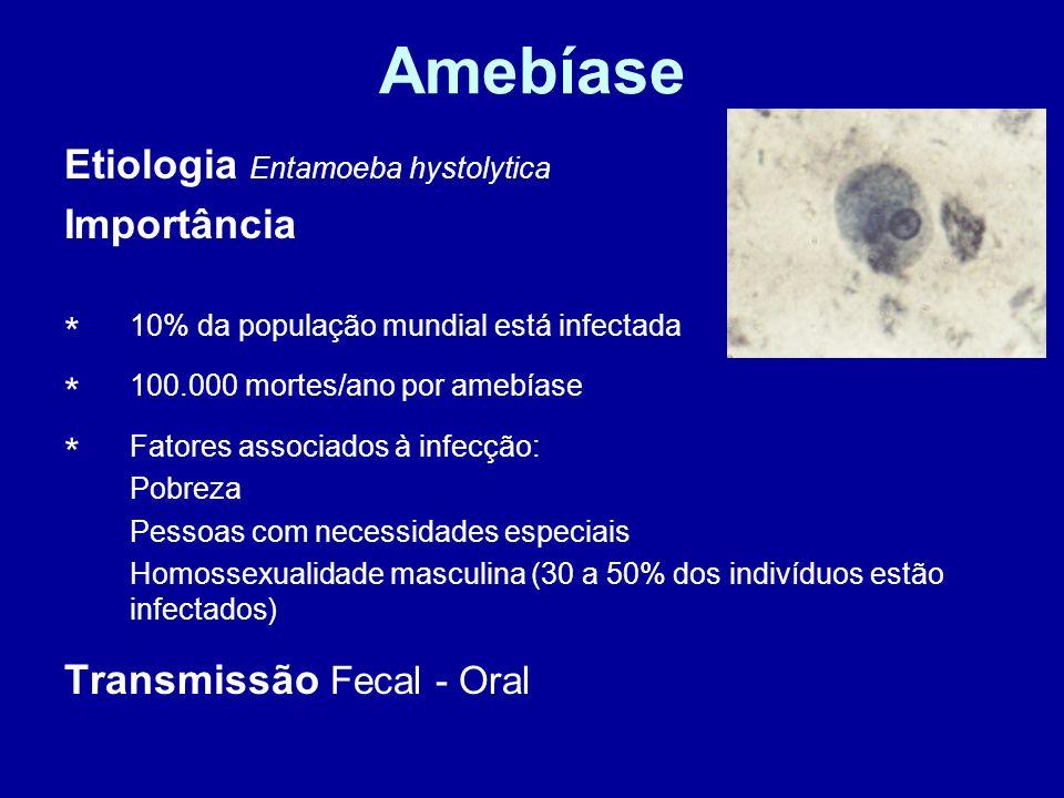 Amebíase Etiologia Entamoeba hystolytica * Importância