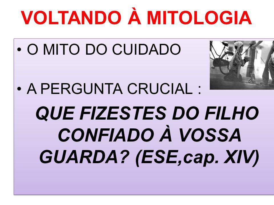 QUE FIZESTES DO FILHO CONFIADO À VOSSA GUARDA (ESE,cap. XIV)