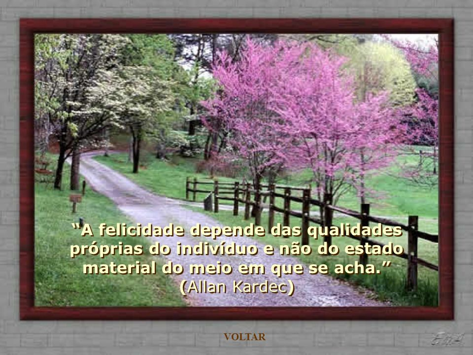A felicidade depende das qualidades próprias do indivíduo e não do estado material do meio em que se acha. (Allan Kardec)