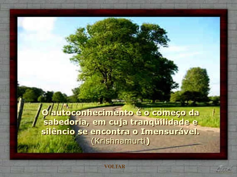 O autoconhecimento é o começo da sabedoria, em cuja tranqüilidade e silêncio se encontra o Imensurável. (Krishnamurti)