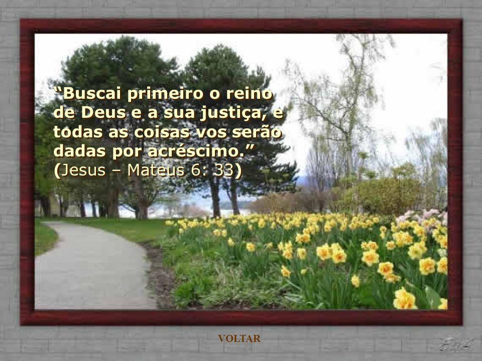 Buscai primeiro o reino de Deus e a sua justiça, e todas as coisas vos serão dadas por acréscimo. (Jesus – Mateus 6: 33)