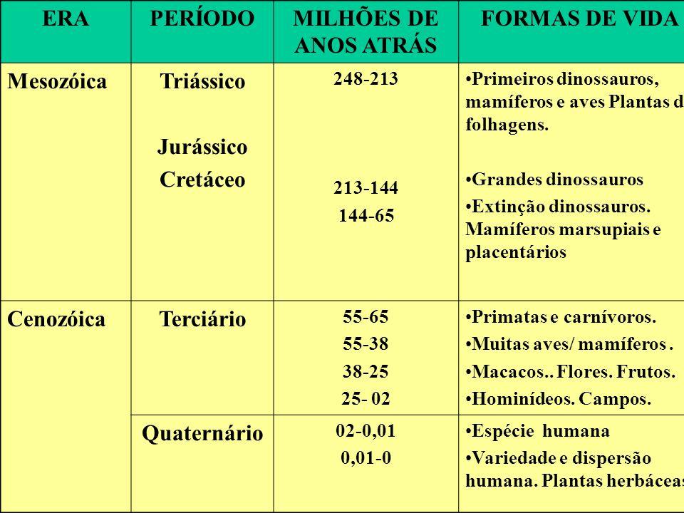 ERA PERÍODO MILHÕES DE ANOS ATRÁS FORMAS DE VIDA Mesozóica Triássico