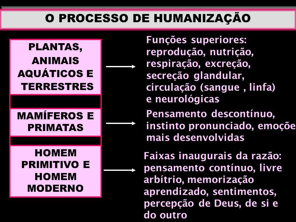 O PROCESSO DE HUMANIZAÇÃO