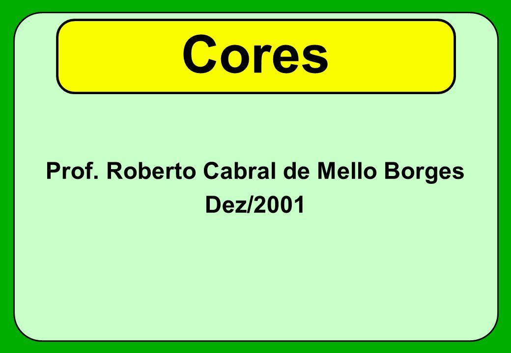Prof. Roberto Cabral de Mello Borges