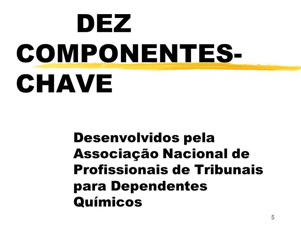 DEZ COMPONENTES-CHAVE