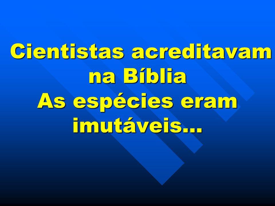 Cientistas acreditavam na Bíblia As espécies eram imutáveis…