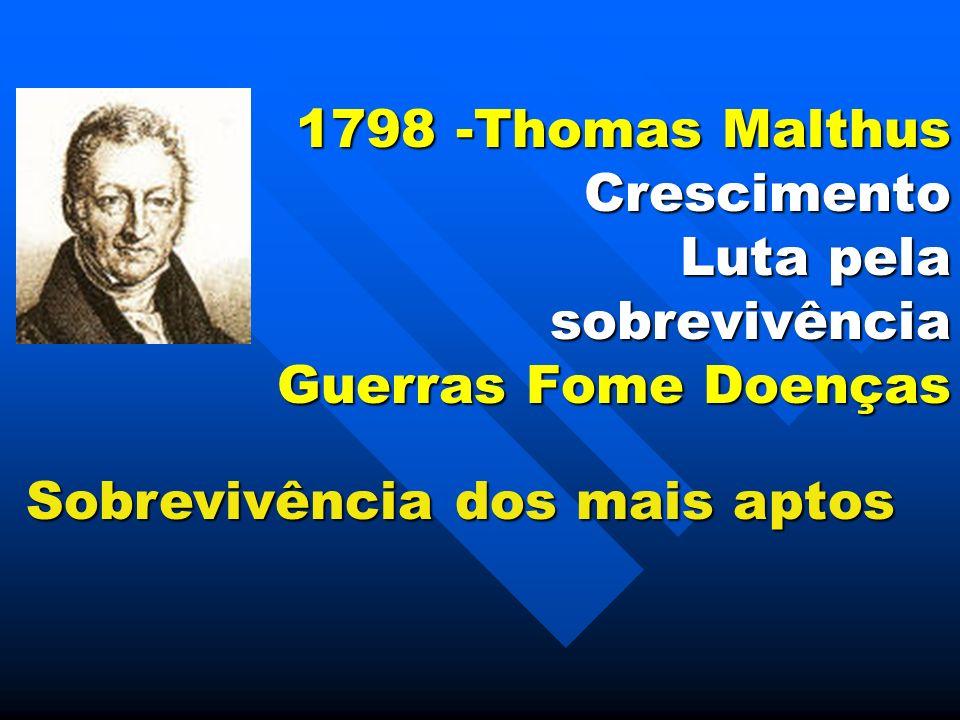 1798 -Thomas Malthus Crescimento Luta pela sobrevivência Guerras Fome Doenças