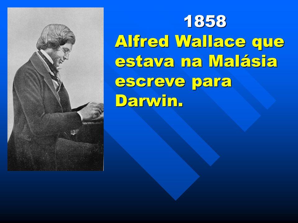 1858 Alfred Wallace que estava na Malásia escreve para Darwin.