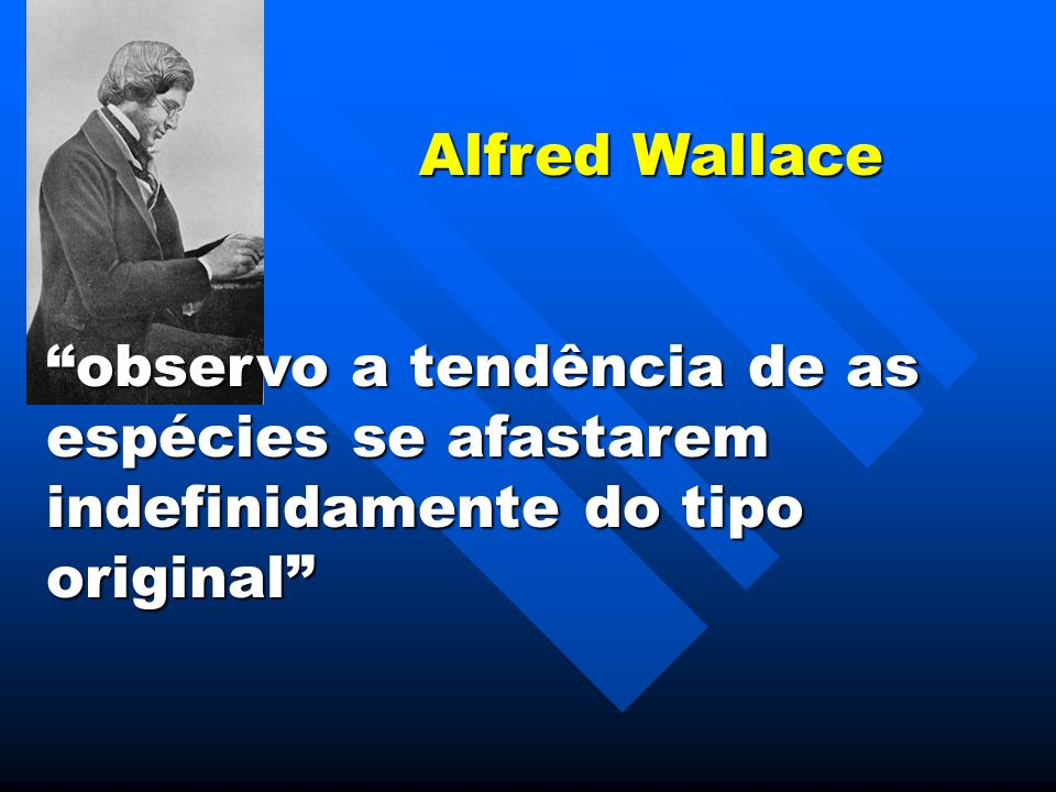 Alfred Wallace observo a tendência de as espécies se afastarem indefinidamente do tipo original