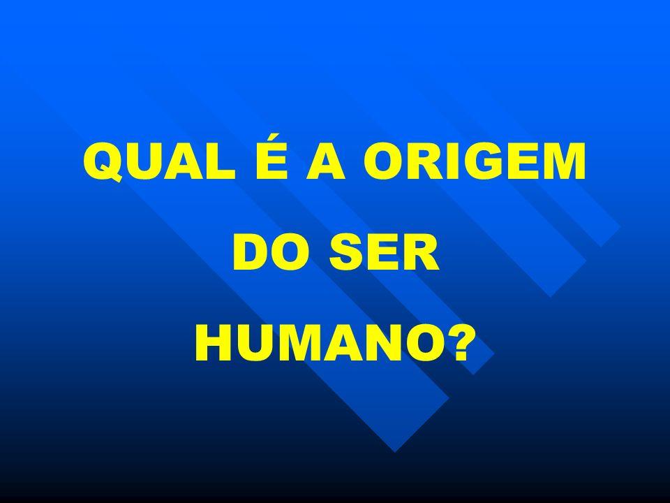 QUAL É A ORIGEM DO SER HUMANO