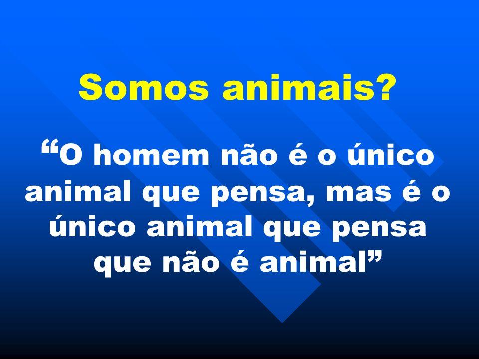 Somos animais.