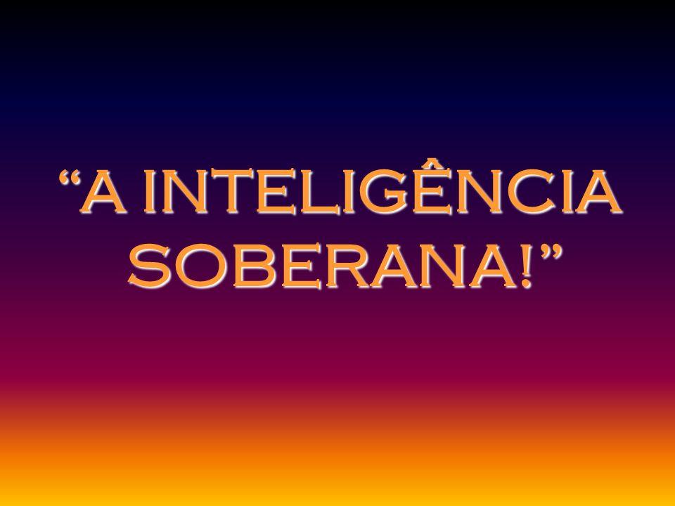 A INTELIGÊNCIA SOBERANA!