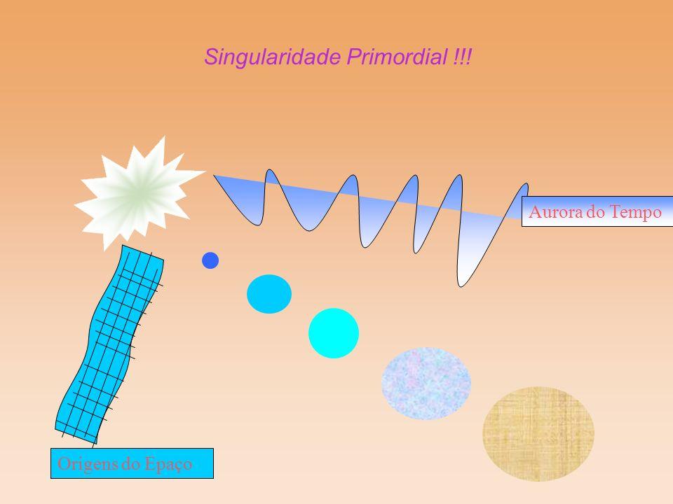 Singularidade Primordial !!!