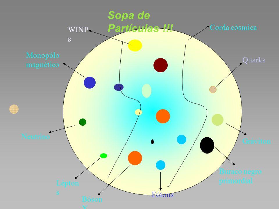 Sopa de Partículas !!! Corda cósmica WINPs Monopólo magnético Quarks