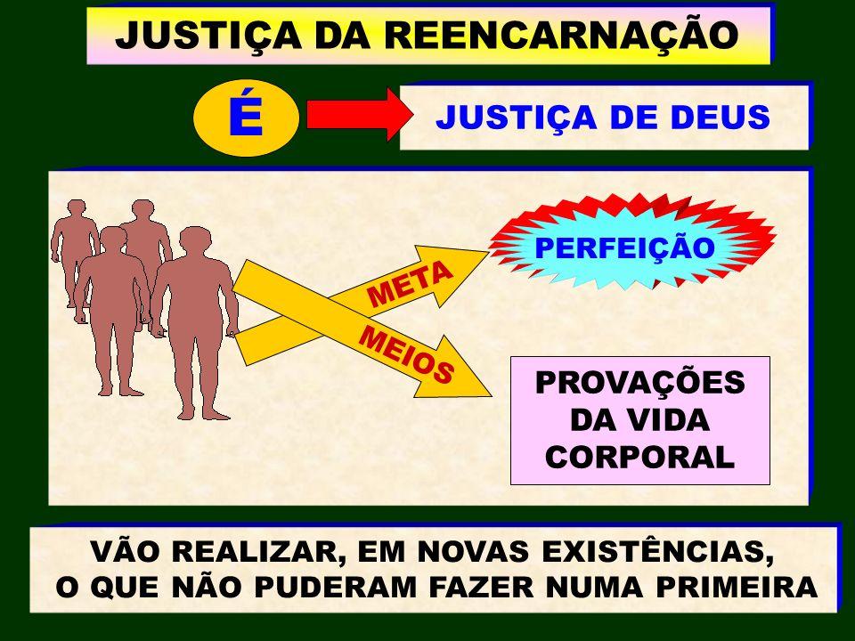 É JUSTIÇA DA REENCARNAÇÃO JUSTIÇA DE DEUS PROVAÇÕES DA VIDA CORPORAL