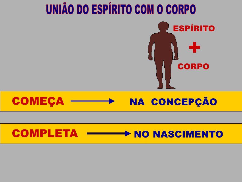 UNIÃO DO ESPÍRITO COM O CORPO