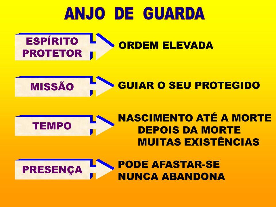 ANJO DE GUARDA ESPÍRITO ORDEM ELEVADA PROTETOR MISSÃO