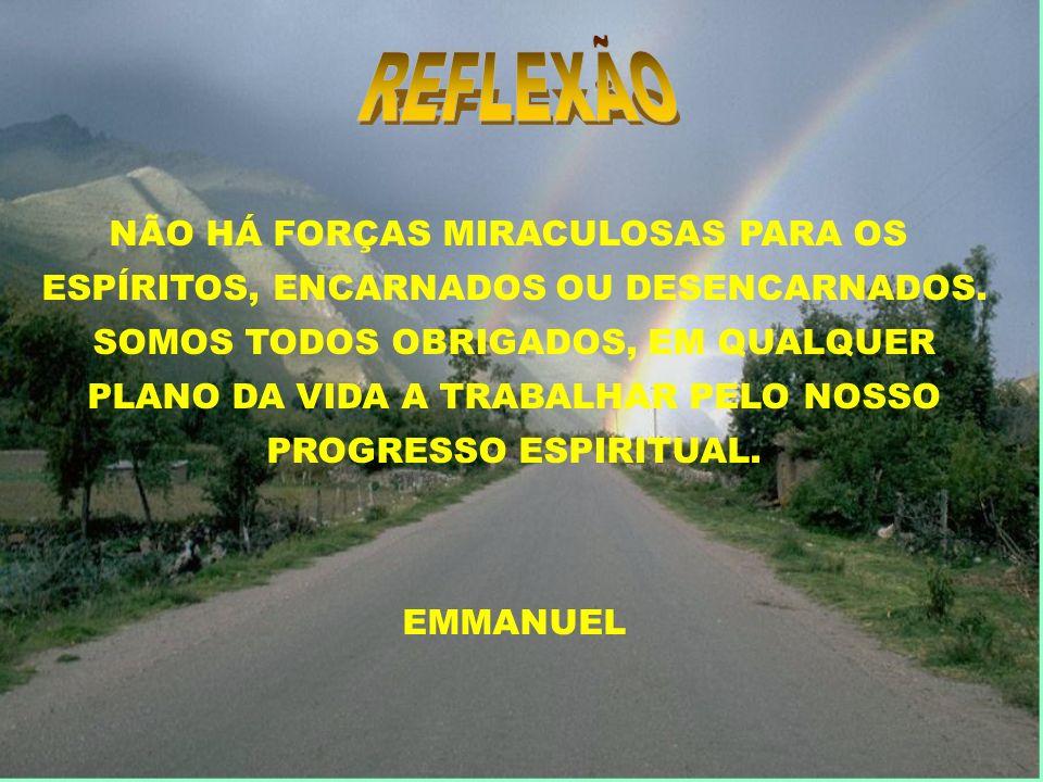 REFLEXÃO NÃO HÁ FORÇAS MIRACULOSAS PARA OS