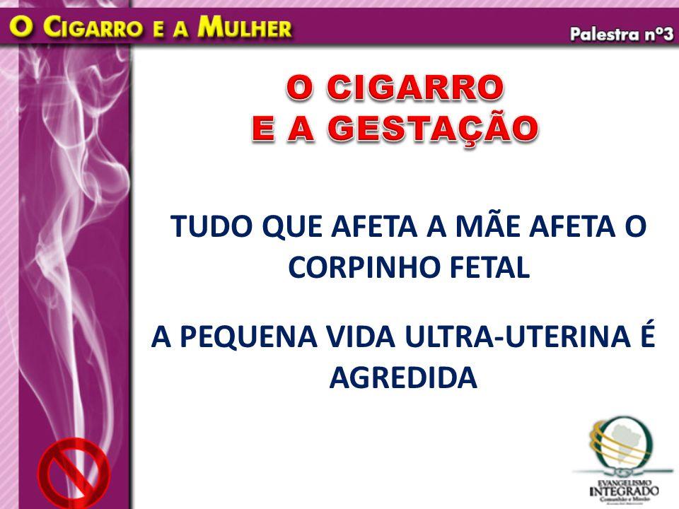 TUDO QUE AFETA A MÃE AFETA O CORPINHO FETAL