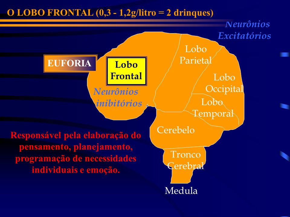 O LOBO FRONTAL (0,3 - 1,2g/litro = 2 drinques)