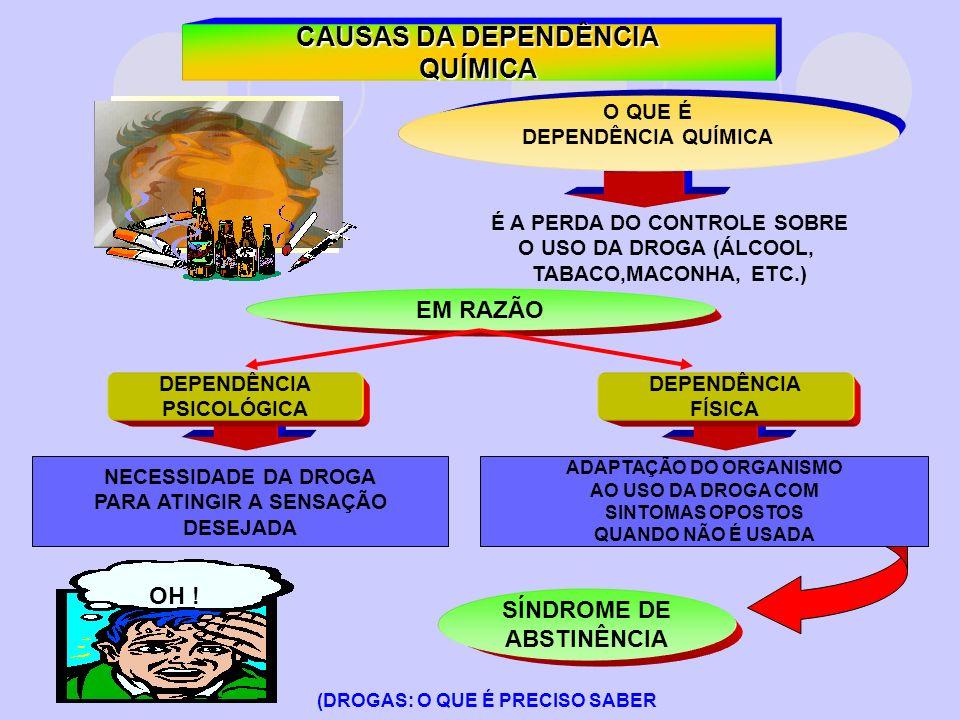 CAUSAS DA DEPENDÊNCIA QUÍMICA