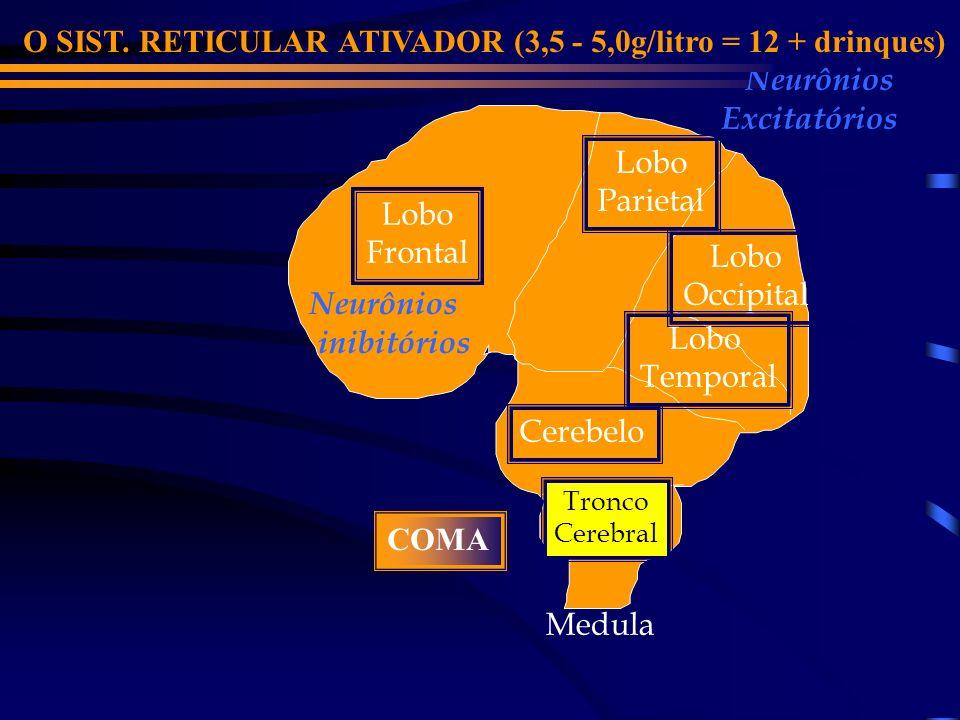 O SIST. RETICULAR ATIVADOR (3,5 - 5,0g/litro = 12 + drinques)