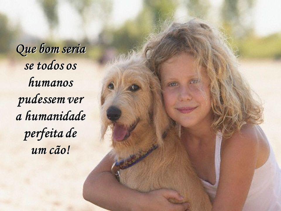 Que bom seria se todos os humanos pudessem ver a humanidade perfeita de um cão!