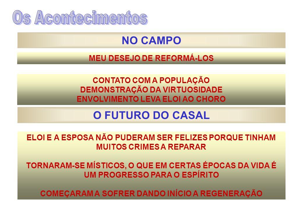 Os Acontecimentos NO CAMPO O FUTURO DO CASAL MEU DESEJO DE REFORMÁ-LOS