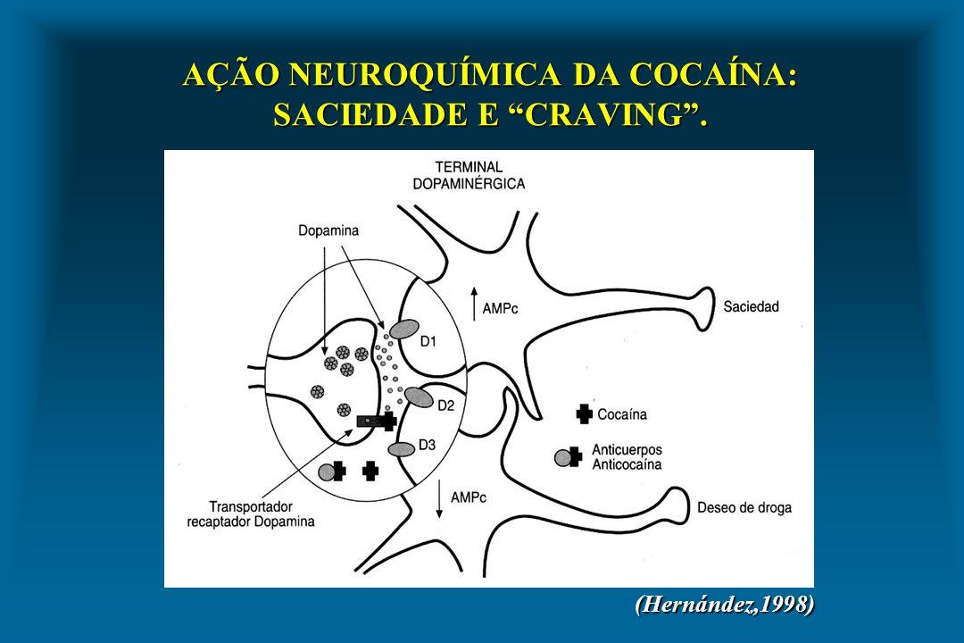 AÇÃO NEUROQUÍMICA DA COCAÍNA: SACIEDADE E CRAVING .