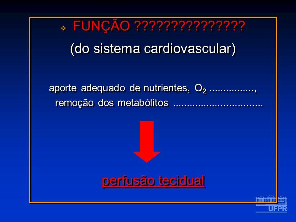 (do sistema cardiovascular)