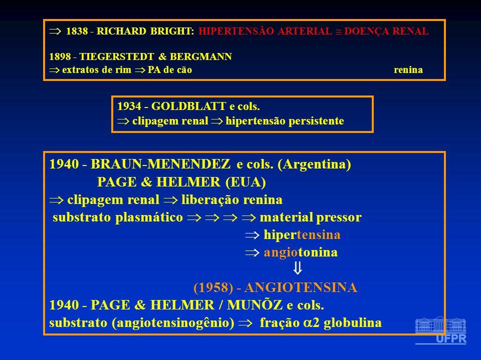 1940 - BRAUN-MENENDEZ e cols. (Argentina) PAGE & HELMER (EUA)